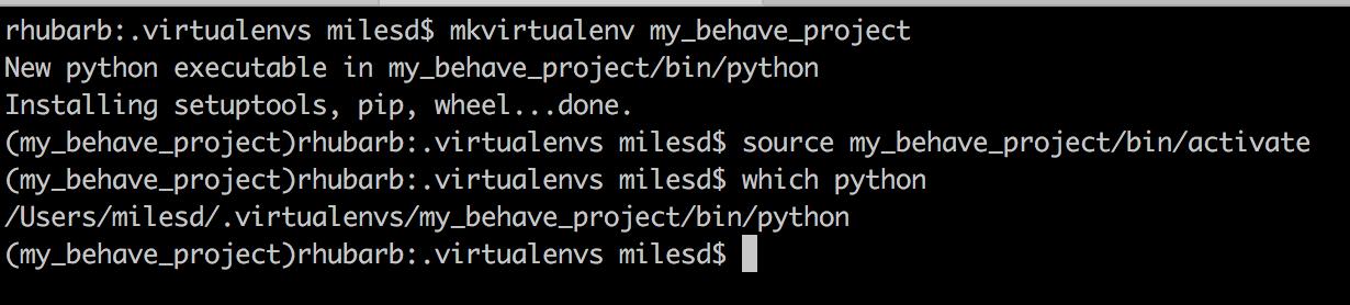 Python virualenv